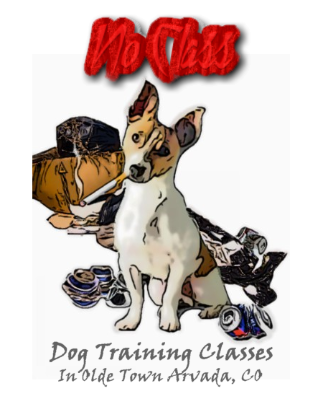 Affordable Small Groups Local Dog Training Classes - NO